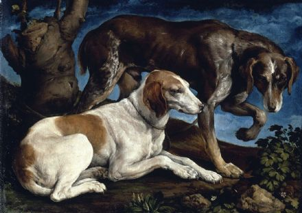 Bassano, Jacopo: Two Hounds. Fine Art Print/Poster